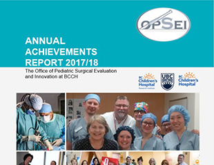 Annual Achievements Report 2017/18